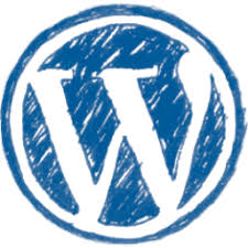 CMS wordpress SEO